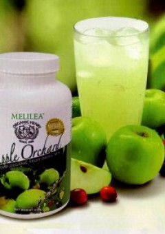 apel-organik-melilea-apple-orchard